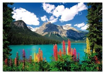Puzzle 1000 Piese Lacul Emerald si Munti