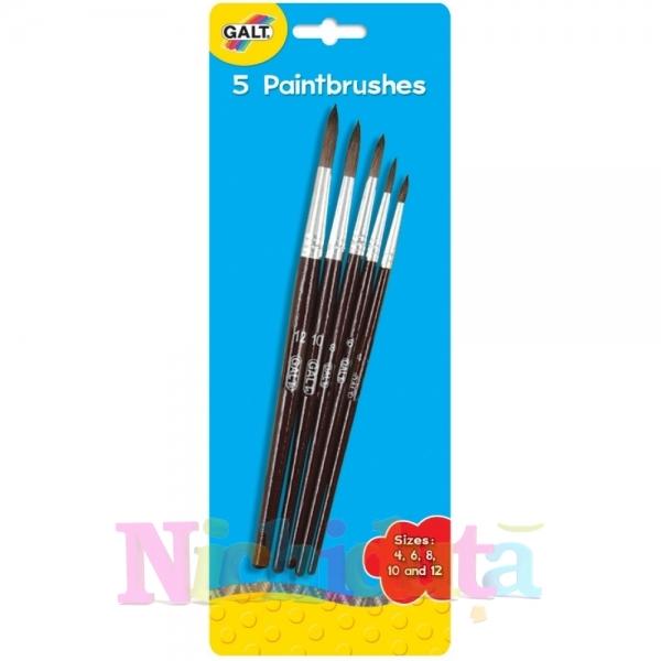 Set 5 pensule 5 paintbrushes