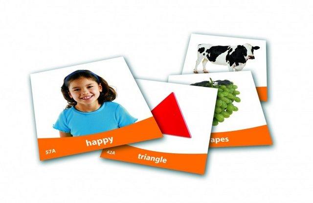 Set imagini vocabularul de baza