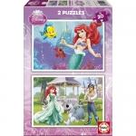 Puzzle Ariel 2x20