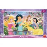 Puzzle - Princess (15 piese)