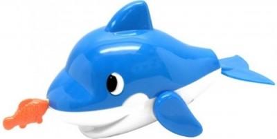 Delfin inotator