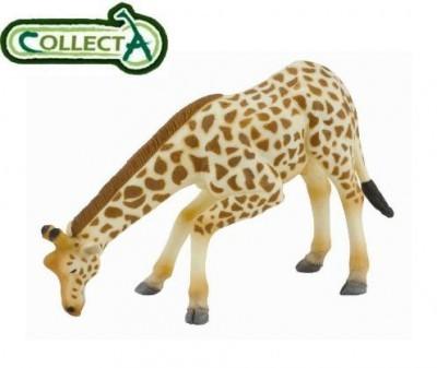 Figurina din plastic Girafa pascand