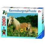 Puzzle Cai 200 Piese