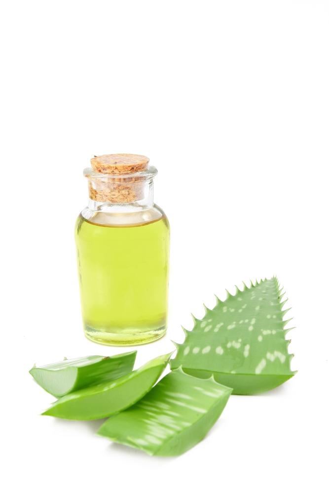 Perna Cu Gel Cu Aloe-vera Grunspecht 187-00