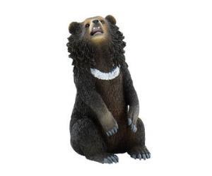 Urs Asiatic negru