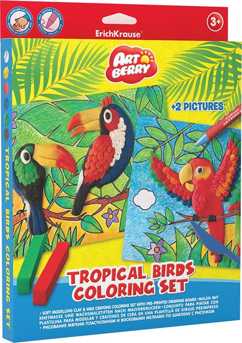 Set creativ - Pasari tropicale