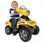 ATV Quad Kripton