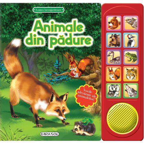 Lumea Inconjuratoare - Animale din Padure