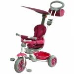 Tricicleta pentru copii Evolution Purple