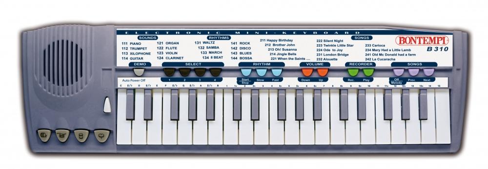 Mini-orga electronica