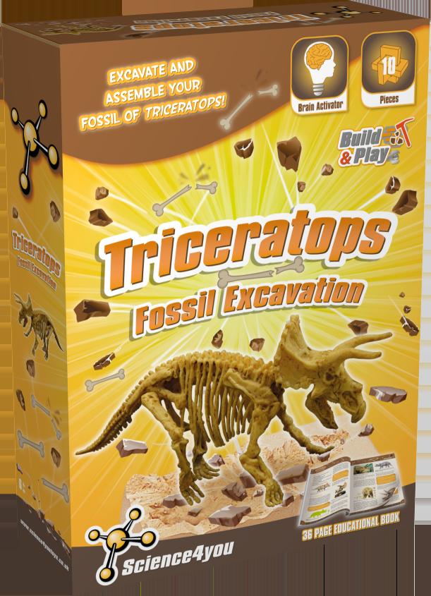 Set paleontologie - Triceratops