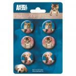 Set 6 Insigne Animal Planet