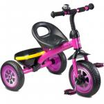 Tricicleta Toyz Charlie Purple