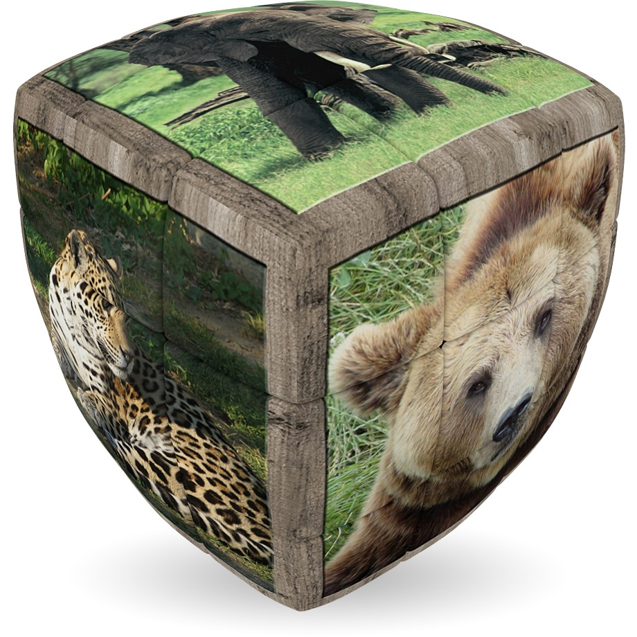 V-Cube Animale salbatice