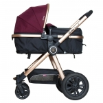 Carucior 2 in 1 Grand Fucsia