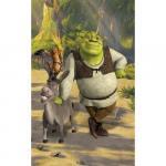 Tapet pentru Copii Shrek