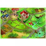 Covoras-Centru de activitati design ferma