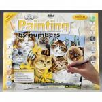 Prima mea pictura pe numere pisici