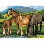 Prima mea pictura pe numere junior mare cai