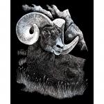 Set gravura pe folie argintie berbec