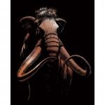 Set gravura pe folie din cupru mamut