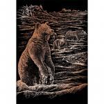 Set gravura pe folie din cupru ursi grizli
