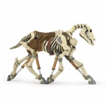 Cal skeleton figurina Papo