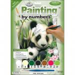 Prima mea pictura pe numere - Panda cu pui