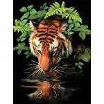 Prima mea pictura pe numere  Tigru