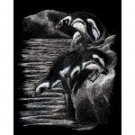 Set gravura pe folie argintie  Pinguini