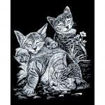 Set gravura pe folie argintie  Pisicute