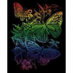 Set gravura pe folie curcubeu  Fluturi