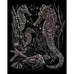 Set gravura pe folie holografica  Caluti de mare