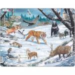 Puzzle Animale Salbatice din Siberia si Nord-Estul Asiei, 66 Piese Larsen LRFH34
