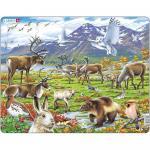 Puzzle Zona Arctica, 50 Piese Larsen LRFH14