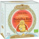 Ceai premium Budha Box cutie cu toate cele 11 ceaiuri Hari Tea bio 11dz
