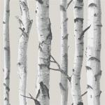 Tapet din vinil WallPops Birch Tree