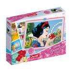 Joc creativ Fanta Color Imago Princess Quercetti 300 piese