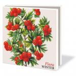 Mapa cu 10 felicitari Flora Winter