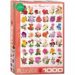 Puzzle 1000 piese Roses