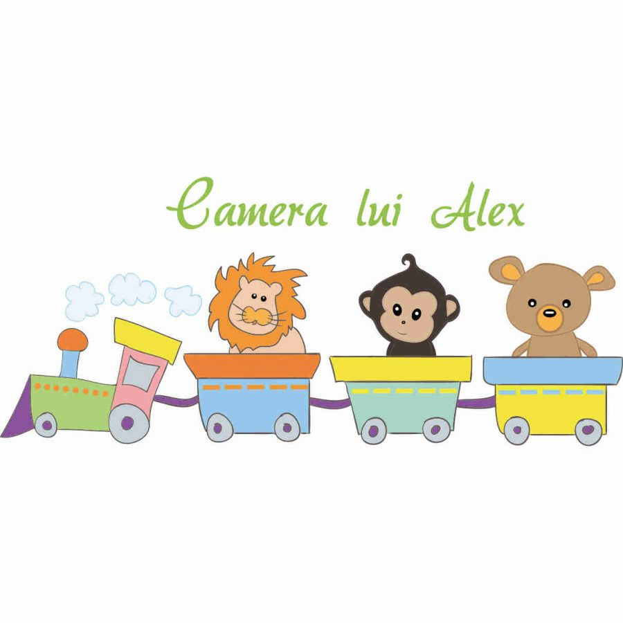 Sticker decorativ Camera baietel