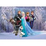 Fototapet Disney Frozen Elsa in padure 160 x 115 cm