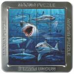 Puzzle magnetic holografic Rechini