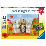 Puzzle Aventura Pisicutelor 2x12 piese