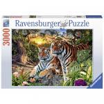 Puzzle Tigri 3000 piese