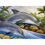 Prima pictura pe nr jr.mare Insula delfinilor