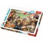 Puzzle Trefl 260 Pisicute