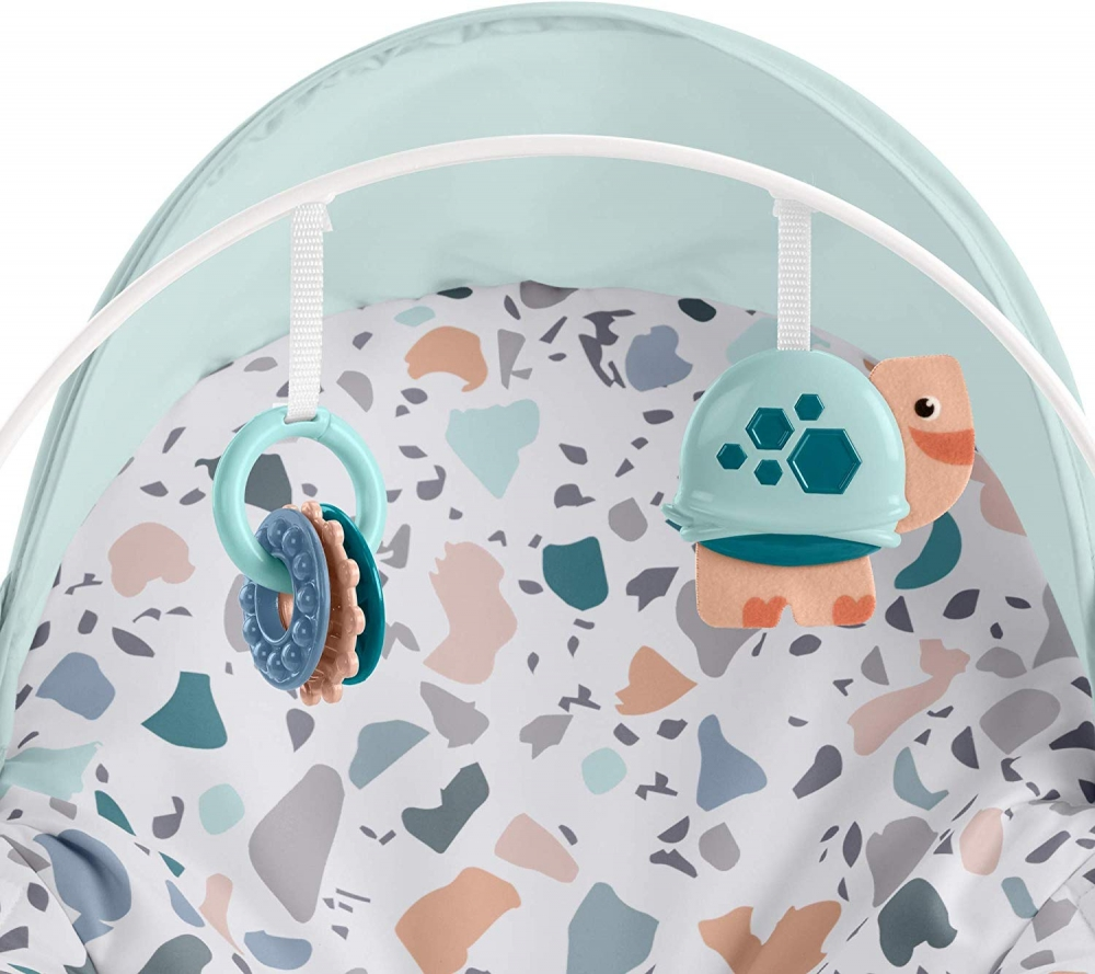 Balansoar Fisher Price 2 in 1 Infant to Toddler Deluxe imagine