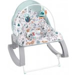 Balansoar Fisher Price 2 in 1 Infant to Toddler Deluxe
